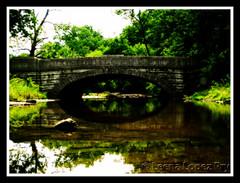 A Bridge to Serendipity (Kentuckiana (In & Out of Flickr)) Tags: bridge water creek bravo poem searchthebest kentucky orton blueribbonwinner magicdonkey louisvile senecapark allrightsreserved anawesomeshot superaplus aplusphoto superbmasterpiece goldenphotographer