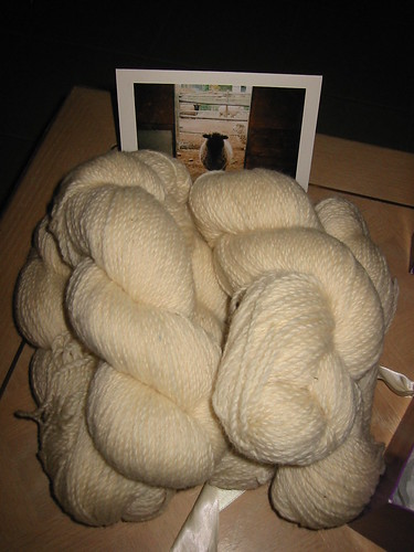 gift wool