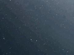 Sagittarius_JUNE07