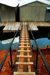 Walk the Plank. (BamaWester) Tags: reflection water marina huntsville alabama boathouse plank bamawester napg