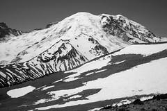 Mount Rainier (James Marvin Phelps) Tags: park mountain photography james washington mount national rainier cascade phelps mandj98