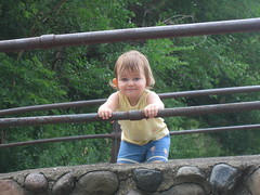 Lexi on the Bridge