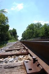 tracks spikes