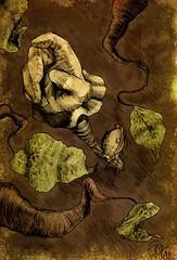 pegandofolha (ilustracionamentador) Tags: brazil black color art colors brasil pencil photoshop arte drawing victor draw ilustrao ilustration desenho balano chalks criao olhando procurando castilho subindo victorjam