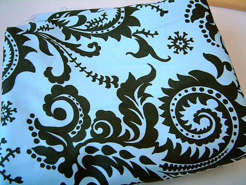 Amy Butler Fabric for skirt