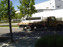 East Bay shuttle at bus stop p.m. 2 (liliacarol) Tags: sunnyvale pedestrian conditions