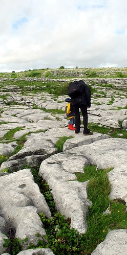 In the Burren
