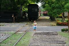 阿里山森林鐵路13