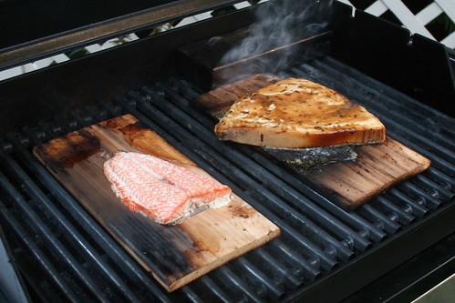 fish, grilled on a cedar plank