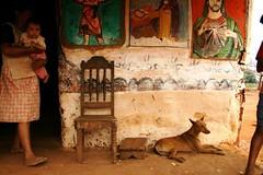 (todoslosantos* Juan Antonio Balsalobre) Tags: world poverty life dog chien dogs animal rural mas farmers culture east perro land perros indigenas deforestation colonos evomorales juanantoniobalsalobre balsalobre movimientoalsocialismo juanantoniobalsalobrecarbonmadecom