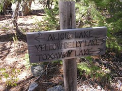 Trail divide at Pettit - we are heading to Alice Lake