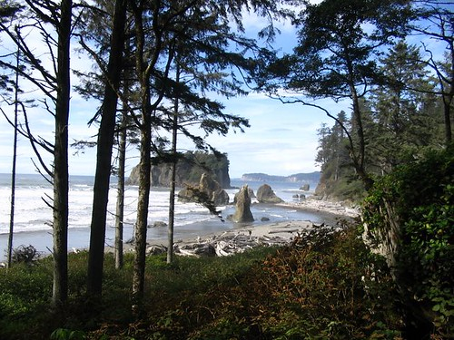 Crescent Beach in Olympic National Park