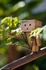 Climbing is J.P.'s middle name (jessytimko) Tags: robot baxter danbo revoltech danboard