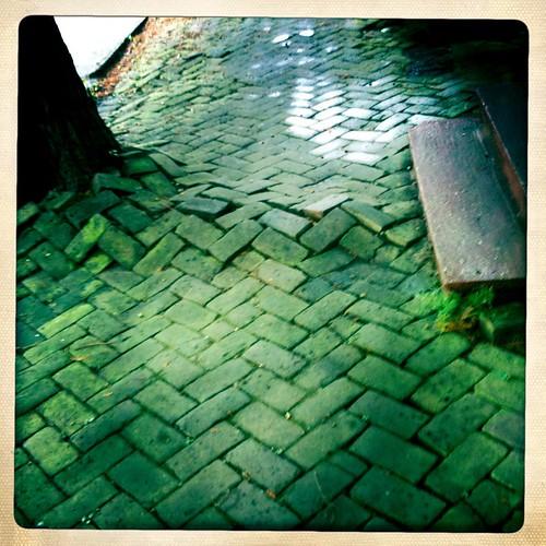 mossy cobblestones