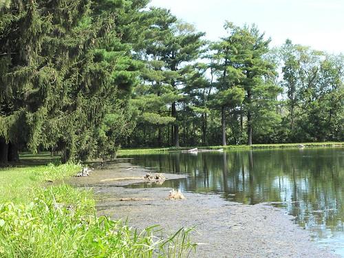 Four Lakes15