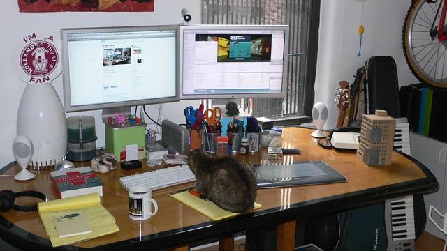 cat computer desk homeoffice chesterfield