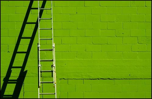 Ladder on green