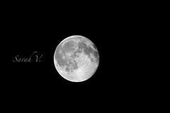 God made the light, I just use it. (Sarah Chaput de Saintonge) Tags: moon white black night dark darkness bright huge