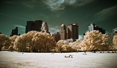The Central Park in Infrared (Werner Kunz) Tags: world park city nyc longexposure trees people urban usa snow ny newyork america photoshop lights town us nikon traffic centralpark manhattan wideangle center stadt infrared sureal bigapple hdr metropole hoya picknick photomatix colorefex nikond90 topazadjust lucysart werkunz1
