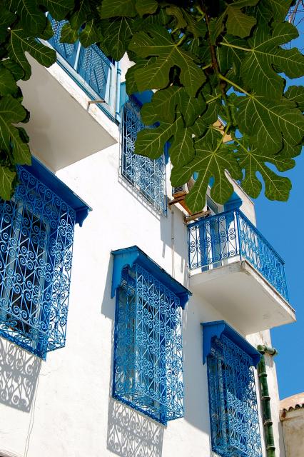 تقرير مفصل الجمهورية التونسية بالكلمة والصورة روعة 886726890_b104be828a