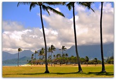 everything happens in threes (beesquare) Tags: park mountains beach clouds hawaii oahu palmtrees kualoaregionalpark
