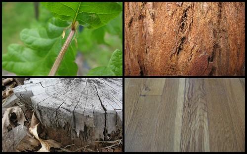 10 05 10 - 10 05 17 - Wood