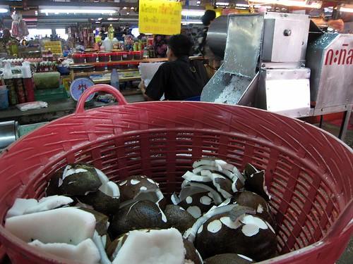 Coconut detritus