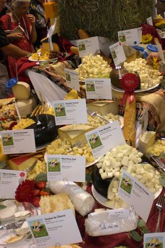 Festival of Cheese 11
