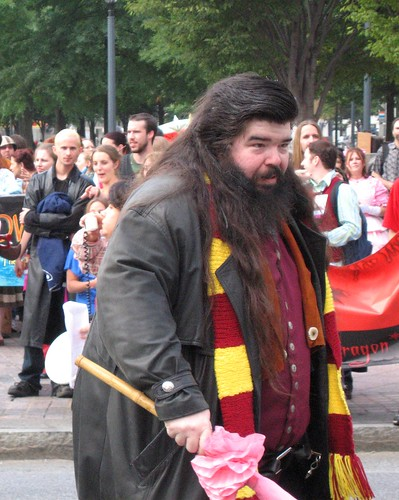 Harry Potter Harry Potter Cosplay