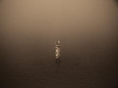 DANGER: Bird! (mike.palic) Tags: morning water fog wisconsin river merrimac