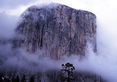 El Capitan, Yosemite, California (curreyuk) Tags: california usa mountain rock clouds america landscape yosemite highfive elcapitan breathtaking amateurs yosemitevalley capitan curryvillage currey ususa instantfave 35faves 25faves abeauty p1f1 5for2 ultimateshot amateurshighfive invitedphotosonly bestofusa grahamcurrey theperfectphotographer bestofamerica curreyuk peachofashot gcuki