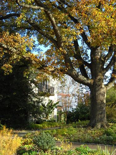Longwood October 2010 155