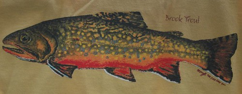 Backwater Angler Brook Trout T-Shirt