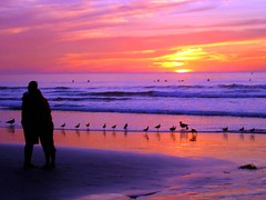 Lovers at Sunset, California Honeymoon (moonjazz) Tags: life pink sunset sky woman seagulls man love beach nature beauty yellow wonderful wonder snuggle one hug perfect kiss honeymoon waves peace sandiego affection sweet amor pair magic unity vivid couples playa valentine romance best lovers celebration together shore sharing moment joined care embrace ocaso share perfection appreciate amar sentimental