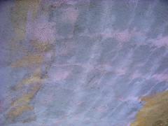 purple plaster (ybonesy) Tags: newmexico corrales albuquerquewomensflickrmeet