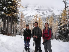 Larch Valley (normanng) Tags: valley larch