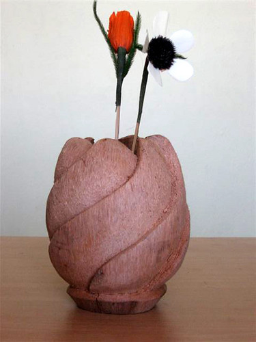 Coconut Husk Flower Vase Collections