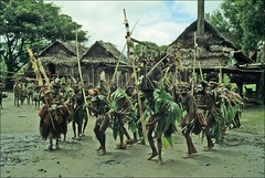 50001549 (wolfgangkaehler) Tags: people dance village dancers dancing ceremony dancer villages tribes tribe papuanewguinea newguinea oceania villagelife ceremonial tribesmen nativepeople tribespeople ceremonialdress riverpeople sepikriver peopleworldwide sepikriverpng