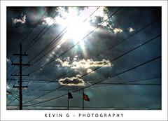 Sunny by K.G.Photos