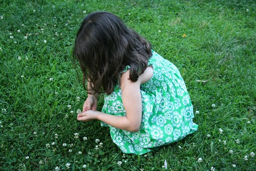Picking clover flowers