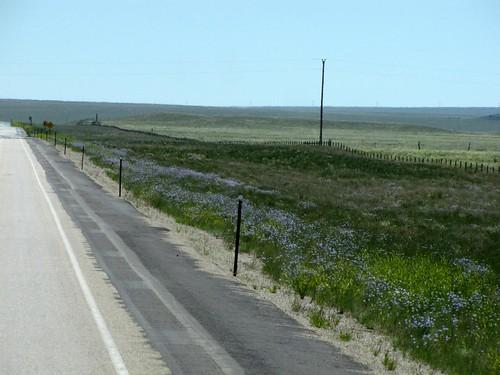 Wyoming Drive 6.25.10-36