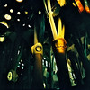 bosque (patorayado) Tags: barcelona 120 film mediumformat lomo xpro lomography cathedral crossprocess columns 200 gaudi lubitel analogue sagradafamilia russiancamera c41 166b develope