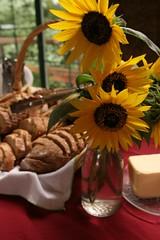 Wine & Culinary Festival