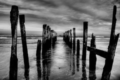 St Clair Poles B&W (chris17nz) Tags: newzealand bw landscape scenery dunedin breathtaking questfortherest naturesfinest bwdreams supershot mywinners platinumphoto anawesomeshot superbmasterpiece diamondclassphotographer ysplix fiveflickrfavs excapture top30bw theroadtoheaven