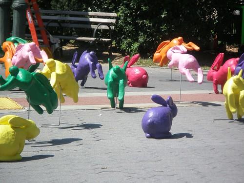 Conejos multicolores