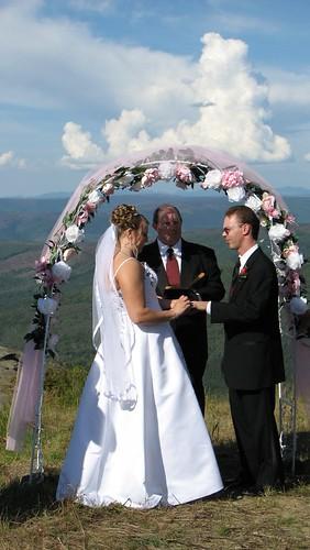 Tara's wedding