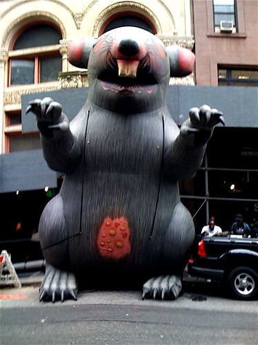The Giant Inflatable Rat