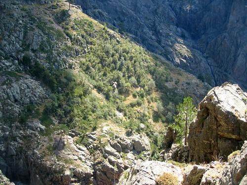 Au col 'infranchissable' de l'épine rocheuse : en surplomb au-dessus de Campu di Vetta