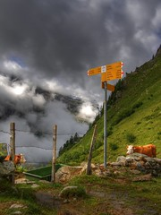 Somewhere close to nowhere (mabufeu) Tags: mountain green nature yellow fence landscape grey schweiz switzerland kuh cow outdoor wiese dramatic wolken zaun alp hdr stacheldraht wanderweg wegweiser trnke feutersoey coldupillon olympussp550 sannenland