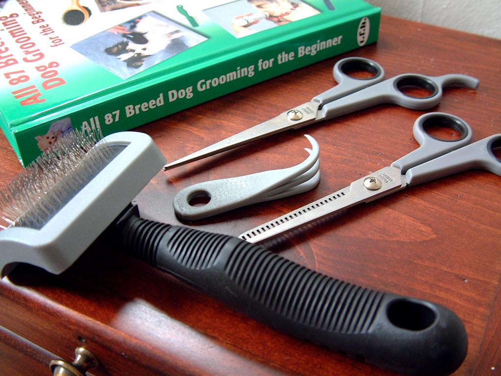 Dog Grooming Scissors Grooming Scissors Best Poultry